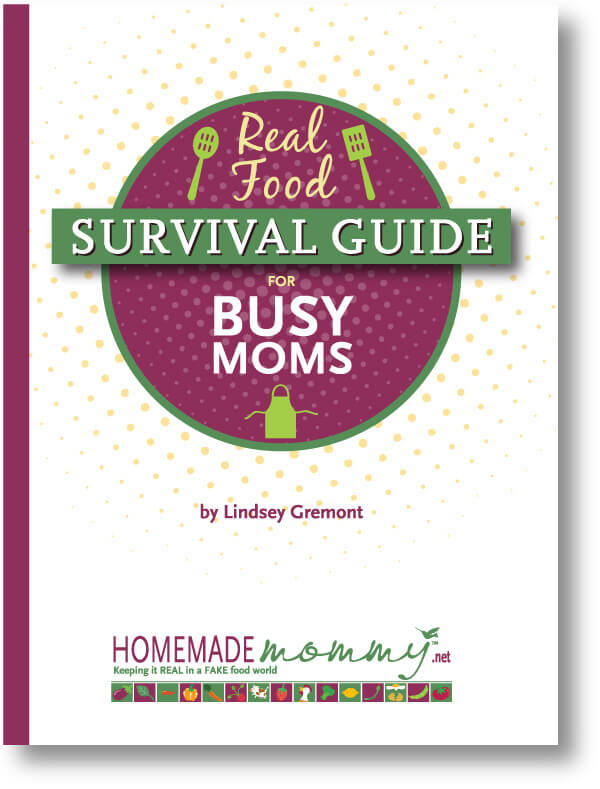 Book Review: Real Food Survival Guide For Busy Moms