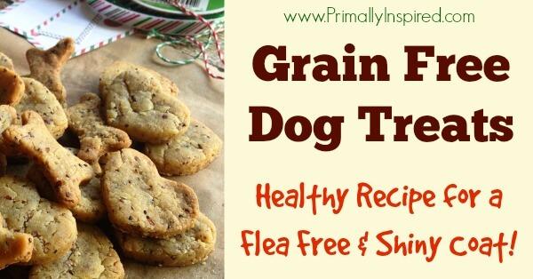 Homemade Gluten Free Dog Treats Recipe for flea free and shiny coat from Primally Inspired