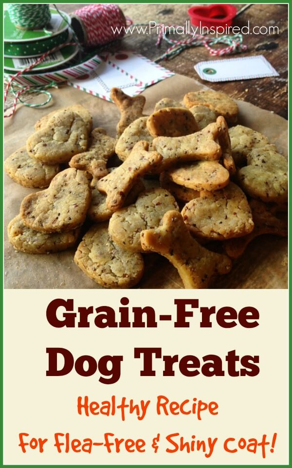 Grain And Yeast Free Dog Food