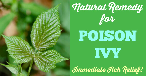 Natural Remedy For Poison Ivy Relief
