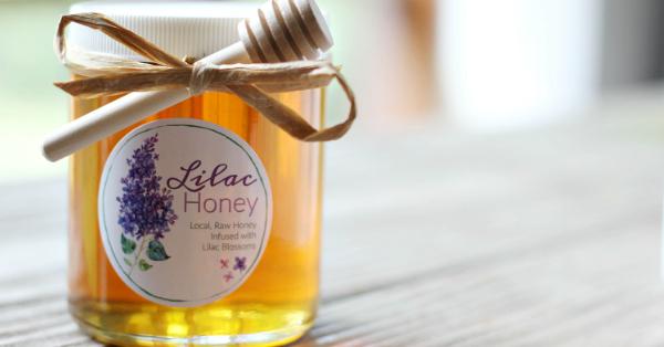 Lilac Honey Recipe
