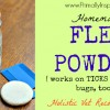 Homemade Flea Powder from Primally Inspired (works on ticks and other bugs, too!)