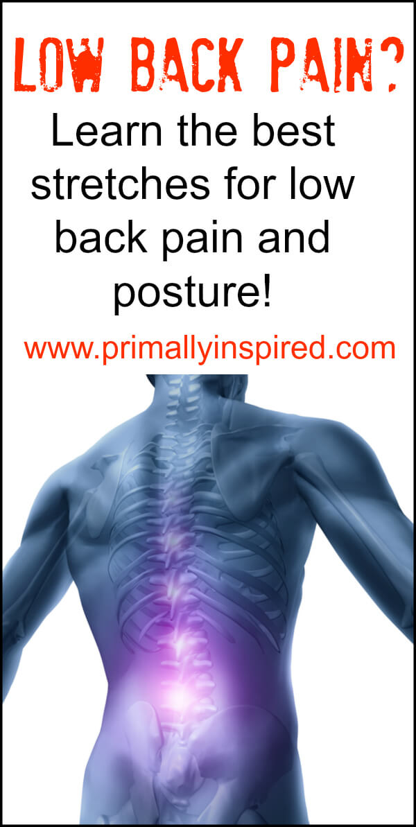Best Stretches for Low Back Pain and Posture | PrimallyInspired.com