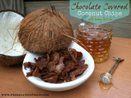 Chocolate Covered Coconut Chips with Honey Drizzle