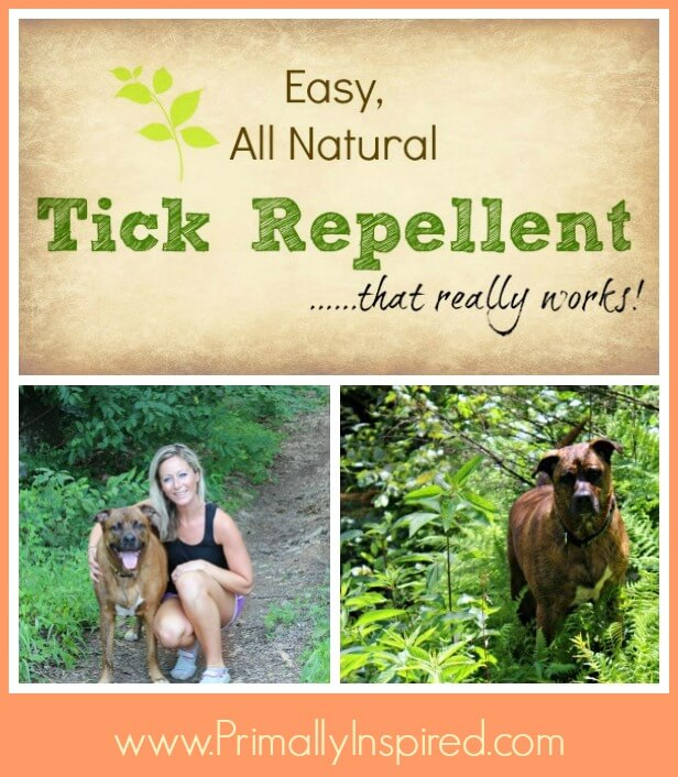 Natural Tick Repellent that works!