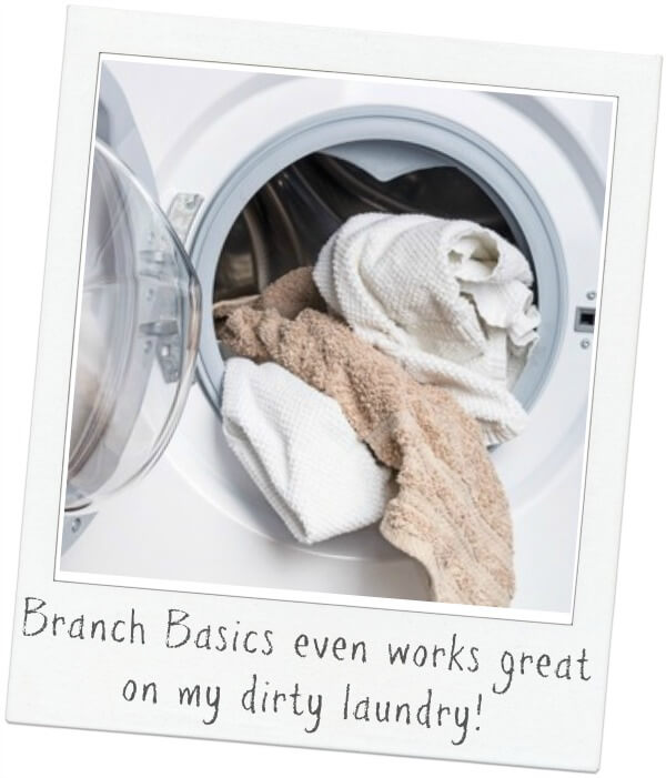 Branch Basics works great in your laundry!