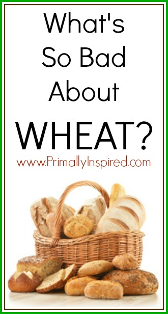 What's Wrong with Wheat PrimallyInspired.com