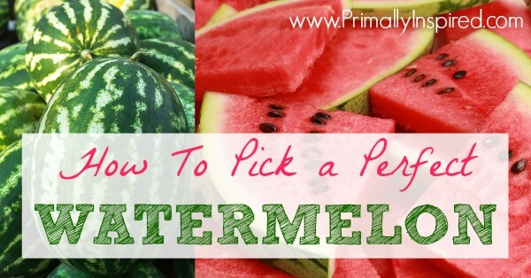 How to Pick a Watermelon from Primally Inspired