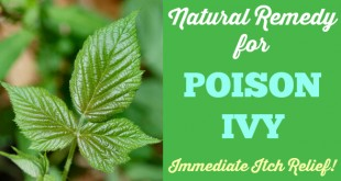 Poison Ivy Natural Remedy! Immediate Itch Relief! Works for poison oak, bug bites, rashes, stings, too! | Primally Inspired