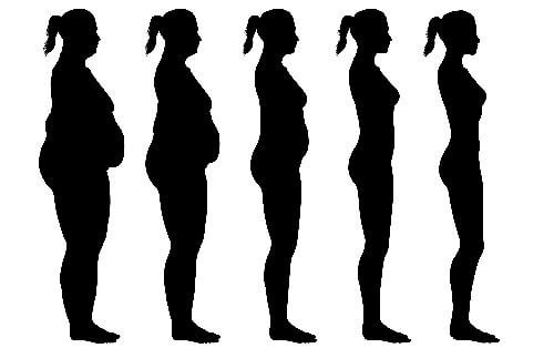 How To Lose Belly Fat - A Holistic Approach from Primally Inspired #weightloss
