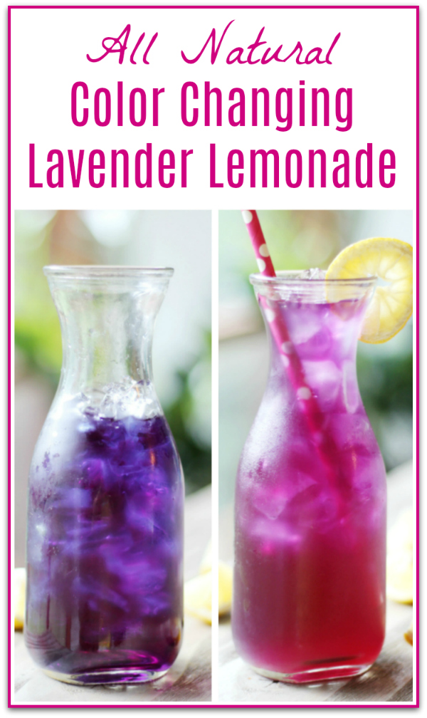 Butterfly Pea Flower Lavender Lemonade Recipe
