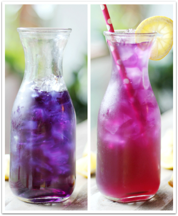 Color Changing Butterfly Pea Flower Lemonade Recipe! All natural!